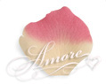 Dreamland Butter and Fuschia Silk Rose Petals Wedding 100