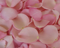 Light Pink Fresh Rose Petals Wedding 250