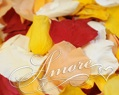 Candy Corn Freeze Dried Rose Petals Wedding Small Case 8 cups