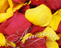 Autumn Harves Freeze Dried Rose Petals Wedding 1 lb