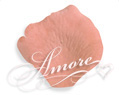 Apricot Light Terracotta Silk Rose Petals Wedding 4000