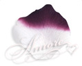 Silk Rose Petals Luxor (Eggplant and White)